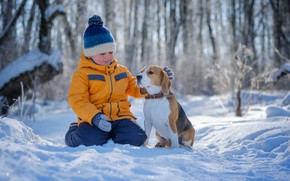 Picture winter, forest, snow, nature, animal, dog, Boy