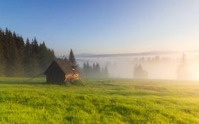 Wallpaper fog, morning, the barn