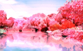 Picture trees, nature, lake