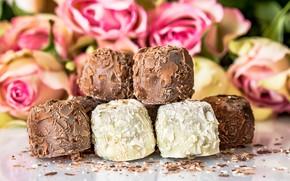 Picture flowers, roses, bouquet, dessert, chocolates