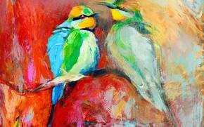 Picture birds, picture, strokes