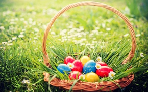 Wallpaper grass, flowers, basket, Easter, flowers, spring, Easter, eggs, decoration, basket, Happy, the painted eggs