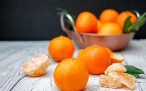 Picture citrus, cinnamon, slices, Mandarin