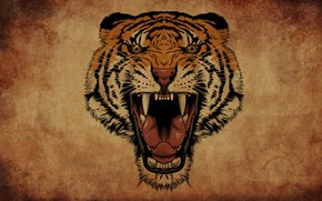 Picture tiger, background, mouth, fangs, roar