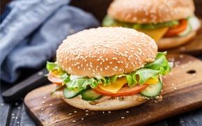 Picture vegetables, Patty, buns, burgers