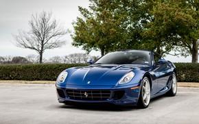 Picture Ferrari, Blue, GTB, 599