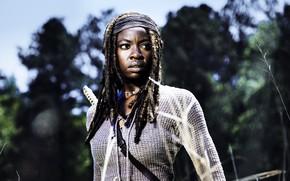 Picture The Walking Dead, Michonne, Danai Gurira, Season 8