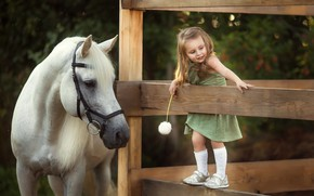 Wallpaper joy, dandelion, horse, the fence, girl