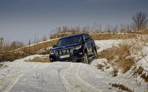 Picture the sky, snow, movement, vegetation, SUV, the roads, Toyota, 4x4, Land Cruiser, the five-door