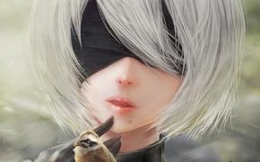 Picture kawaii, girl, sword, game, robot, dress, woman, beautiful, katana, face, blade, cute, warrior, cyborg, chest, …