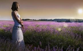 Picture summer, girl, lavender