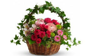 Wallpaper white background, Lily, bouquet, chrysanthemum, basket, roses, leaves