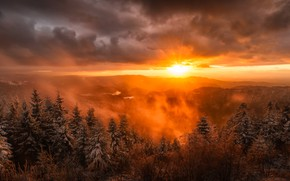 Picture the sun, snow, landscape, mountains, nature, fog, dawn, spruce, Germany, sunshine, landscape, nature, mountains, snow, …