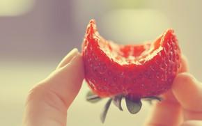 Picture Macro, Strawberry, Strawberry