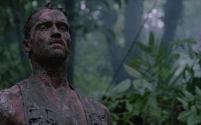 Wallpaper clay, The Beast, Predator, leaf, strong, movie, face, konoha, Arnold Alois Schwarzenegger, Alan Schaeffer, film, ...