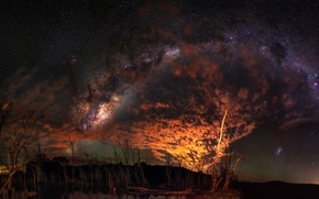 Picture stars, clouds, light, trees, night, Australia, the milky way