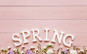 Picture flowers, background, spring, pink, flowers, background, spring