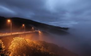 Picture night, bridge, fog