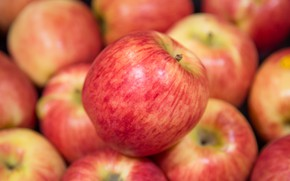 Picture macro, apples, red