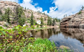 Picture greens, mountains, nature, rock, lake