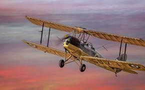 Picture Tiger Moth, Aicraft, Dream Flight