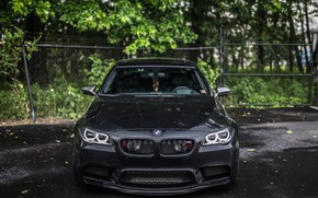 Picture BMW, Front, Black, F10