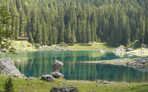 Picture Nature, Lake, Forest, Stones, Spruce, Italy, Lake Carezza