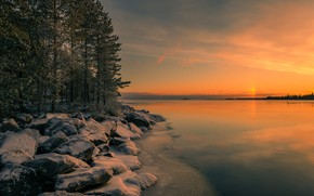 Picture winter, forest, the sky, snow, trees, sunset, lake, stones, shore, horizon, Finland