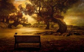 Picture autumn, trees, bench, bridge, river, bird