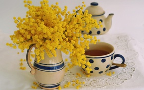 Wallpaper pitcher, Mimosa, Acacia silver, Cup, bouquet, tea, mug, style