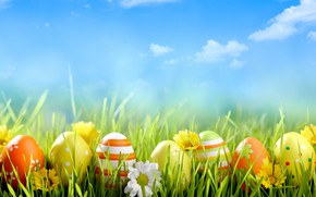Picture flowers, holiday, eggs, Easter, weed
