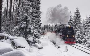 Wallpaper winter, forest, train