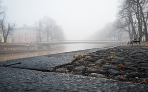 Picture the city, fog, street, bench