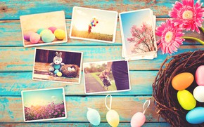 Picture flowers, photo, eggs, spring, camera, colorful, Easter, gerbera, wood, pink, flowers, camera, spring, Easter, eggs, ...