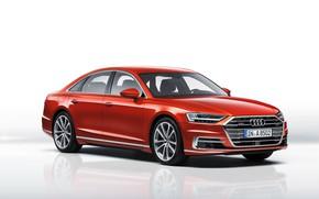 Picture Audi, Audi, white background