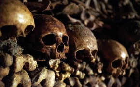 Picture bones, skull, catacombs