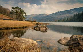 Picture trees, mountains, nature, lake, stones, Wales, Llyn Gwynant