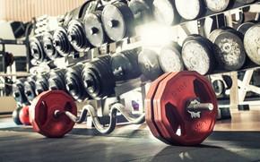 Picture Dumbbells, Rod, Gym