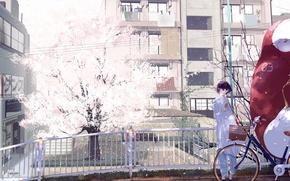 Picture girl, bridge, bike, the city, tree, home, anime, Sakura, art, form, schoolgirl