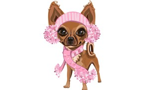 Picture girl, white background, dog, pink scarf