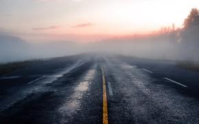 Picture fog, road, nature