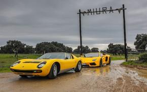 Picture Color, Auto, Lamborghini, Machine, Classic, Dirt, Yellow, 1971, Lights, Car, LP700-4, Aventador, Aventador LP700-4, Lamborghini …