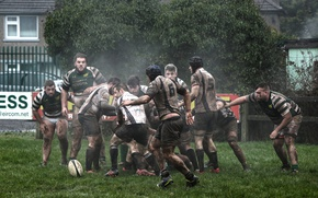 Wallpaper sport, the game, Rugby