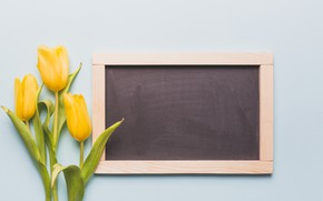 Picture flowers, bouquet, spring, frame, yellow, tulips, Board, fresh, yellow, flowers, tulips, spring, frame