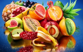 Picture water, reflection, lemon, Apple, orange, watermelon, kiwi, grapes, pear, fruit, pineapple, banana, garnet, avocado, persimmon, …