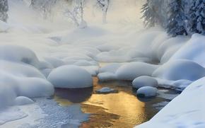 Wallpaper winter, forest, light, snow, trees, nature, river, haze