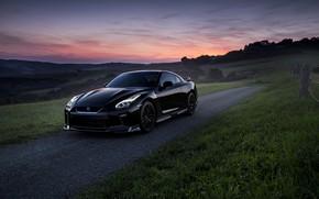 Wallpaper road, field, auto, the evening, Nissan, GT-R