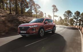 Picture Hyundai, crossover, Santa Fe, 2019