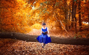 Picture autumn, leaves, Park, tree, mood, girl, book