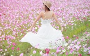 Picture field, summer, girl, flowers, dress